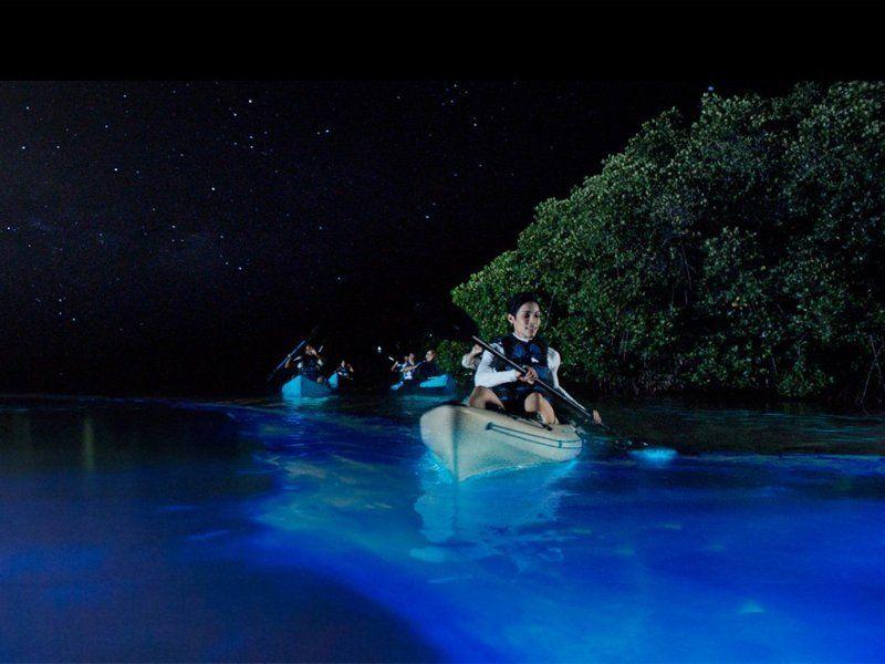 can you kayak at night