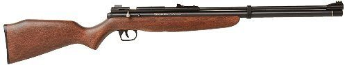 Benjamin discovery air rifle review