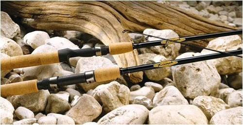 Best casting rod